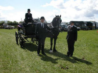 Ceredigion Gwarchodstud horse drawn hoarse ar Hereford driving club show